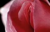 Шантаж інтимними кадрами: що робити, якщо ви попалися на гачок