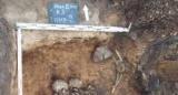 Знайдений стародавній збудник самої смертоносної епідемії в історії