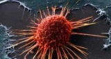 Вчені створили вакцину проти меланоми, ефективність якої становить 100%