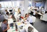Рівень безробіття в США: статистика по роках, розмір допомоги
