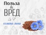 Все, що необхідно знати про насіння льону: користь і шкода насіння льону (як правильно зберігати суперфуд)