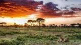 Великий Африканський розлом: опис, історія та цікаві факти