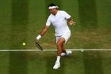 Дель Потро не зазнав проблем з виходом до третього кола Wimbledon